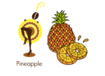 april pineapple